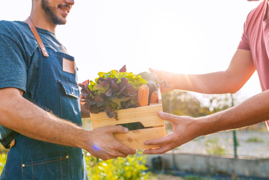 lokální potraviny z farmy, prodej v bedýnkách bez obalu
